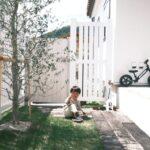 天然芝である高麗芝をDIYで植えました。